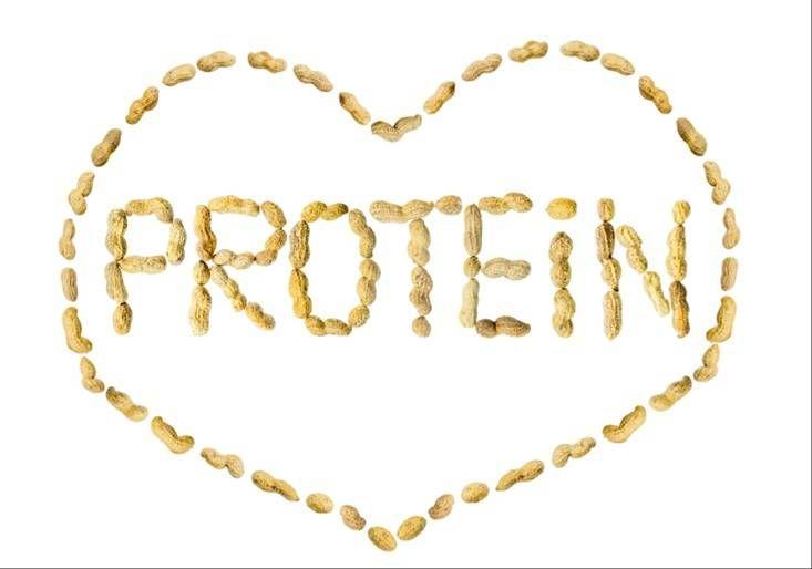 단백질 보충제, 내몸에 맞게 똑똑하게 선택하는 법
