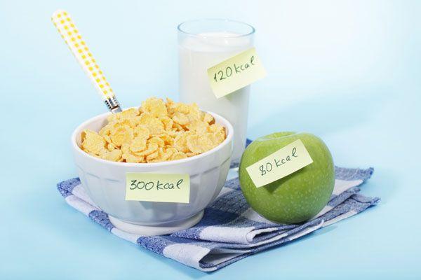 다이어트 성공을 위한 식이조절 `비법`