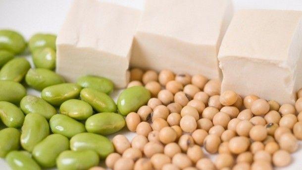 단백질은 왜 다이어트에 도움이 될까?