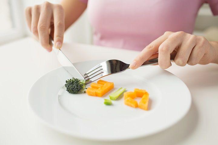 동물성 단백질 VS 식물성 단백질