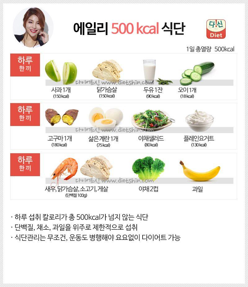 에일리 식단표 (하루 500kcal 식단)