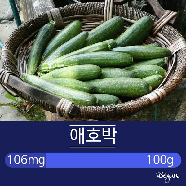 건강에 좋은 오메가3 풍부한 채소들